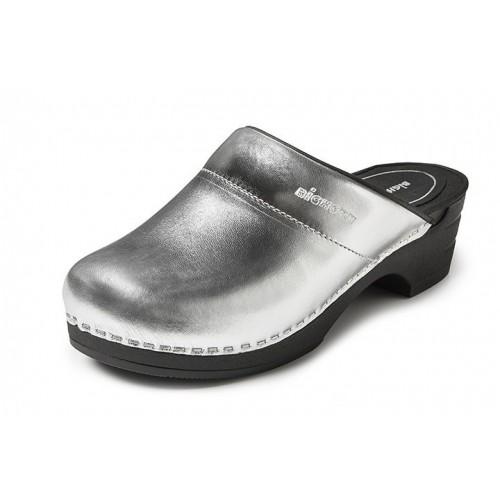 Bighorn Tarne Silver